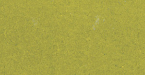 Yellow-green swatch